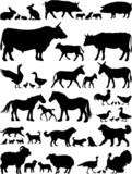 Farm animals vector silhouettes collection