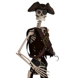 skeleton pirate close up