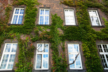 Windows of Wawel Castle in Krakow, Poland.