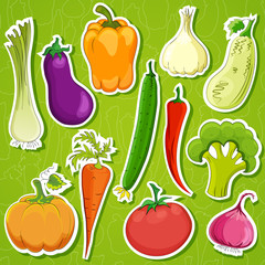 food   background vector illustration