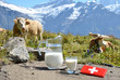 Leinwandbild Motiv Cow and milk