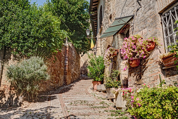 alley with flowers and plants in Montefalco, Umbria, Italy