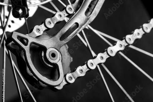 Fotobehang Wielersport Tensioner gear of a bicycle