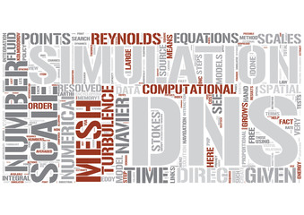 Direct numerical simulation Word Cloud Concept