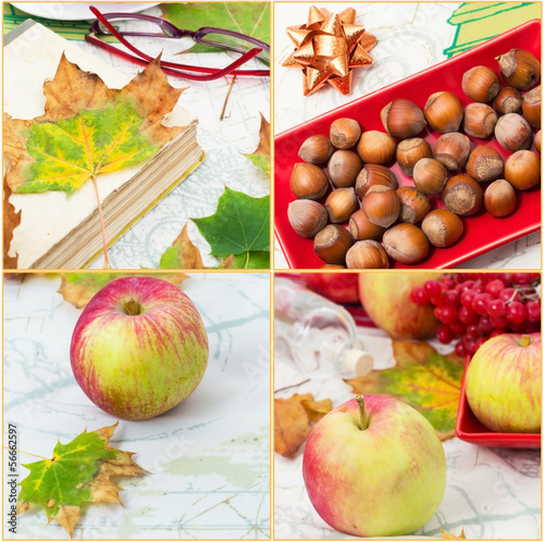 collage with autumn ripe apples,nuts and fallen leaves