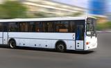 Fototapety white city bus