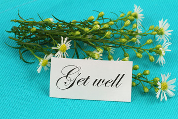 Get well card with fresh chamomile flowers on blue background