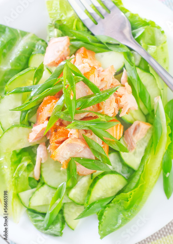 salad with salmon and cucumbers