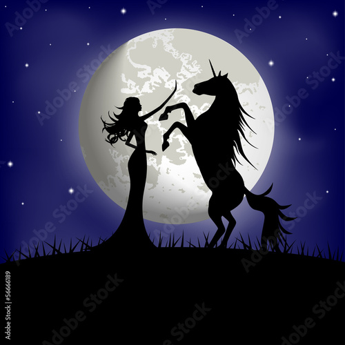 Silhouette of beautiful girl and unicorn on a background of moon