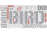 Ornithology Word Cloud Concept poster