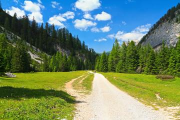 Dolomiti - Contrin Valley