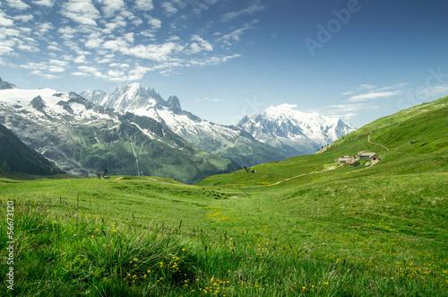 Tuinposter Alpen Massif du mont blanc