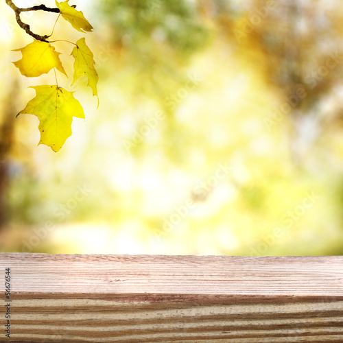 Autumn sky and foliage with aged wooden boards