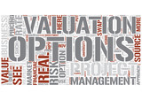 Real options analysis Word Cloud Concept