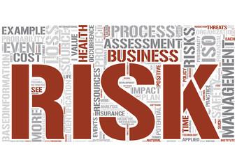 Risk management Word Cloud Concept