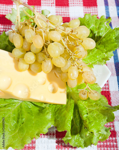Cheese, grapes and lettuce