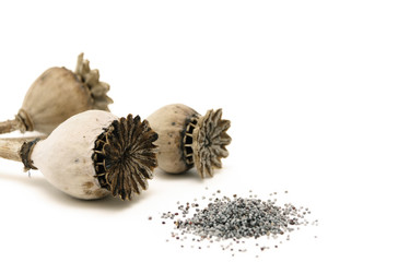 poppy seeds and poppy head isolated on white background