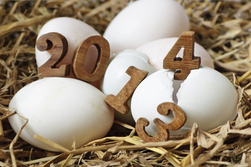 2013 change to 2014, eggs concept