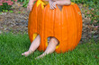 Caucasian baby in pumpkin