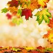 canvas print picture - Herbst Hintergrund umrahmt mit buntem Laub