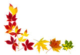 Bunter Rahmen aus Herbstblättern