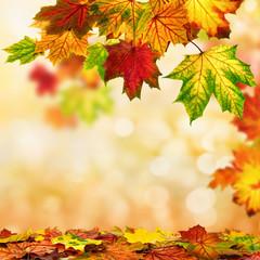 Herbst Hintergrund umrahmt mit buntem Laub