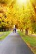 Schöne Herbstzeit im Allgäu
