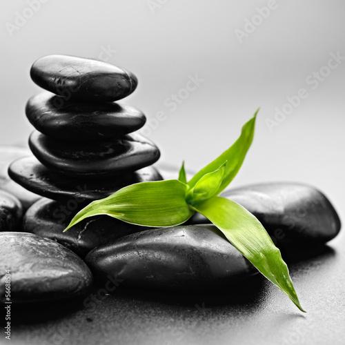 Fototapeten,steine,bambus,kurort,zen