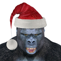 Gorilla Wearing Santa Hat