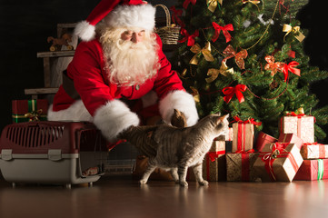 Santa Claus making a most wanted gift to a child placing cute ca