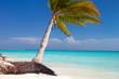 Perfect tropical beach