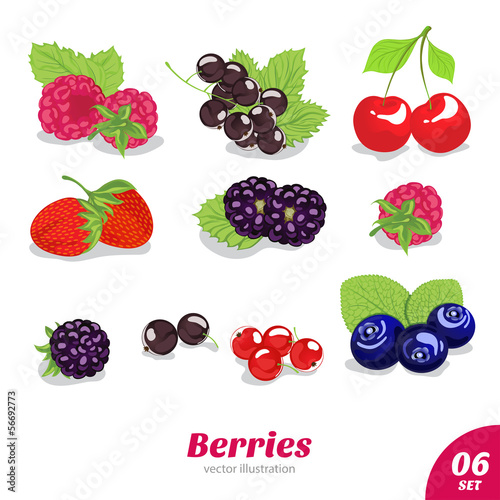 vector set of juicy berries