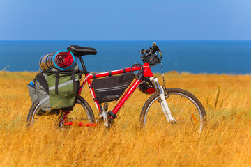 bicycle in a steppe