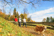Walking-Gruppe mit Hund