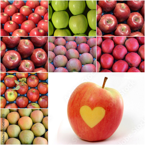 collage of apples