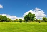 Fototapety Green Landscape