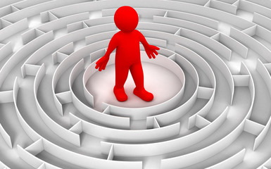 Maze to Man