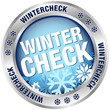"Button ""Wintercheck"" blau/silber"