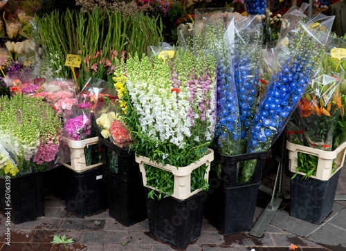 Nice - Flowers in the street market