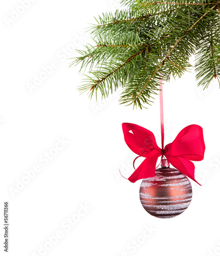 Red bauble on green christmas firtree on white background