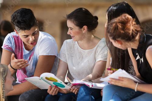 Leinwanddruck Bild Lernen draußen auf dem Schulhof