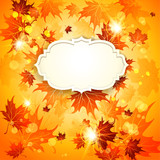 Bright autumn background with maple leaves