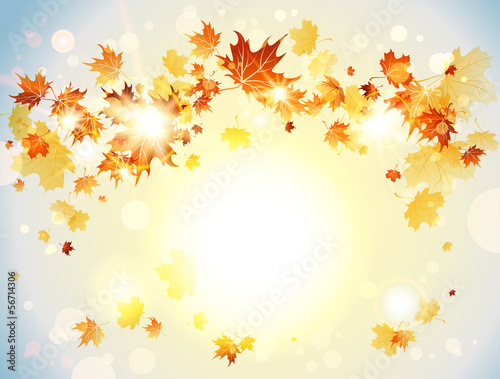 Positive background with autumn leaves
