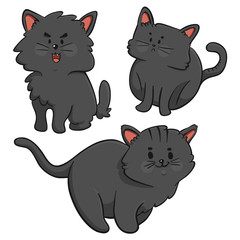 Black Cats Trio