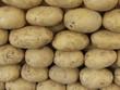 Frische Kartoffeln auf einem Wochenmarkt in Istanbul Erenköy
