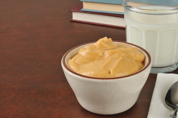 Bowl of butterscotch pudding after school