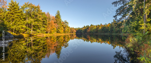 Panorama of a  forest lake in fall