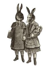 Deux lapins main dans la main sur fond blanc