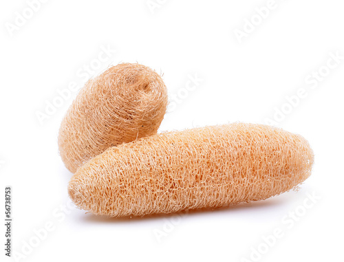 loofah on white background