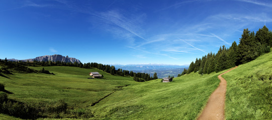 Mountain panorama with chalet and pastures